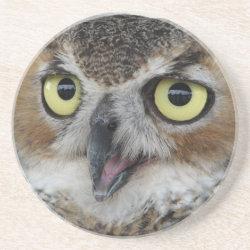 Sandstone Drink Coaster with Great Horned Owl Portraits design