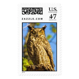 Great Horned Owl Postage