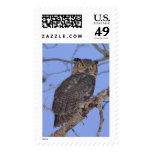 Great Horned Owl Postage Stamps