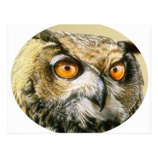 Great-Horned-Owl Post Cards