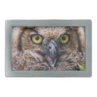 Great Horned Owl Rectangular Belt Buckle
