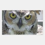 Great Horned Owl Rectangular Stickers
