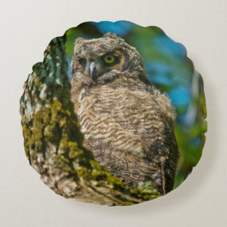 Great Horned Owl Round Pillow