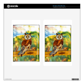 Great Horned Owl Decals For Kindle Fire