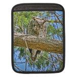 Great Horned Owl Sleeping Photo iPad Sleeve