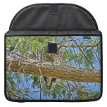 Great Horned Owl Sleeping Photo MacBook Pro Sleeve