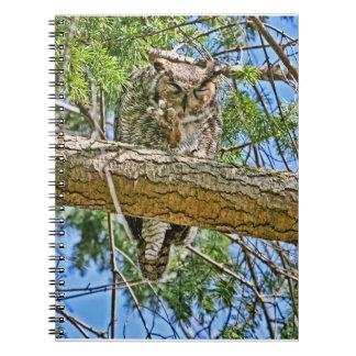 Great Horned Owl Sleeping Photo Notebooks