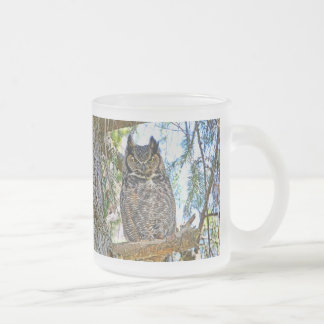 Great Horned Owl Staring 10 Oz Frosted Glass Coffee Mug