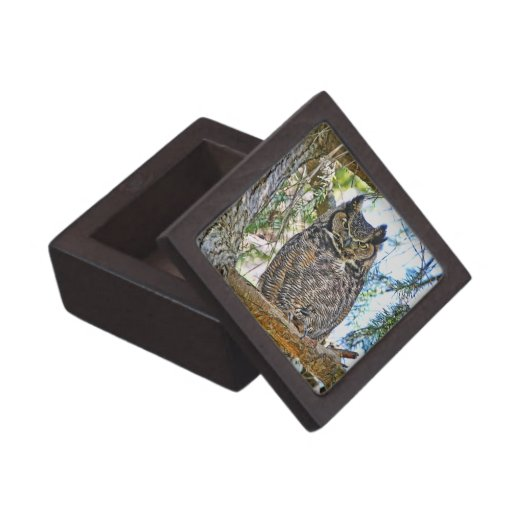 Great Horned Owl Staring Premium Gift Boxes