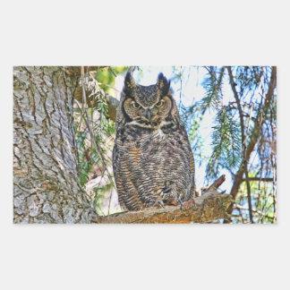 Great Horned Owl Staring Rectangular Sticker
