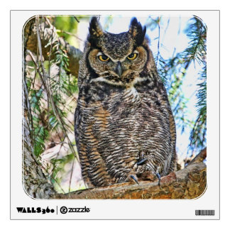 Great Horned Owl Staring Wall Sticker