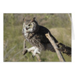 Great Horned Owl Stationery Note Card