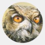 Great-Horned-Owl Sticker