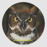 Great Horned Owl Stickers