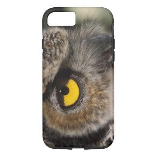 great horned owl, Stix varia, Alaska Zoo, iPhone 8/7 Case