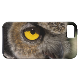 great horned owl, Stix varia, Alaska Zoo, iPhone SE/5/5s Case
