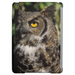 great horned owl, Stix varia, in the Anchorage Cover For iPad Air