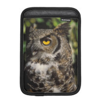 great horned owl, Stix varia, in the Anchorage iPad Mini Sleeve