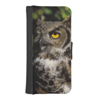 great horned owl, Stix varia, in the Anchorage iPhone SE/5/5s Wallet Case