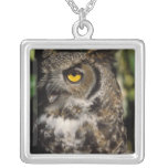 great horned owl, Stix varia, in the Anchorage Square Pendant Necklace