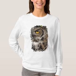 great horned owl, Stix varia, in the Anchorage T-Shirt