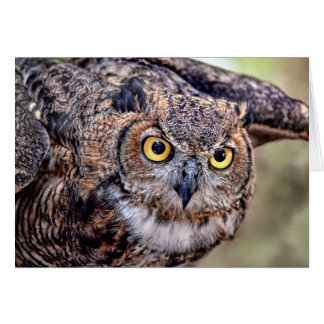 Great Horned Owl Taking Flight Greeting Card