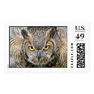 Great Horned Owl Taking Flight Postage