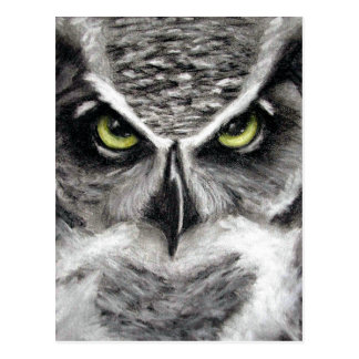 Great Horned Owl Tiger Owls Charcoal Drawing Postcard
