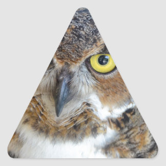 Great Horned Owl Triangle Sticker