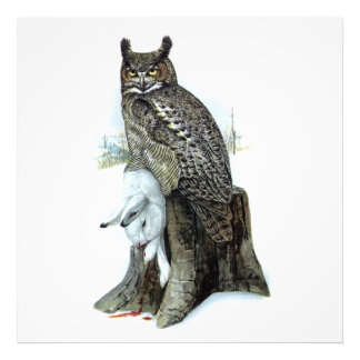 Great Horned Owl with snow hare rabbit Painting Photo Print