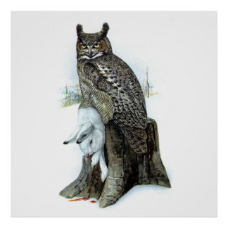 Great Horned Owl with snow hare rabbit Painting Poster