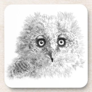 Great Horned Owlet Drawing Drink Coaster