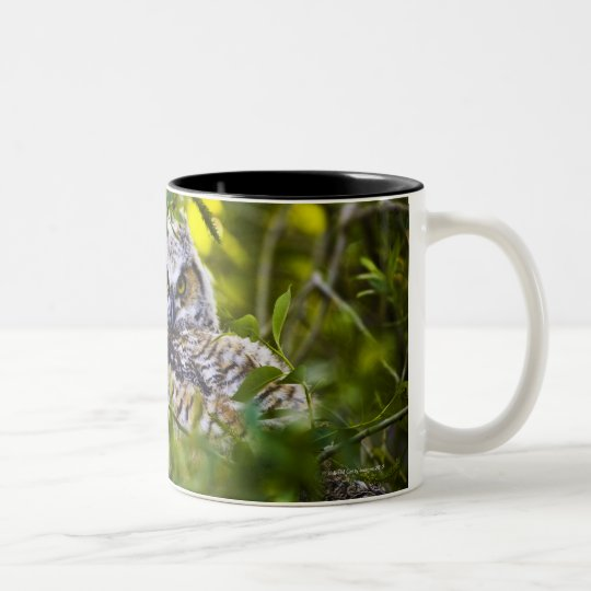 Great Horned Owlet Two-Tone Coffee Mug