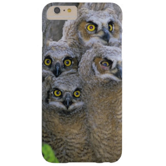 Great Horned Owlets (Bubo virginianus) nest in a Barely There iPhone 6 Plus Case