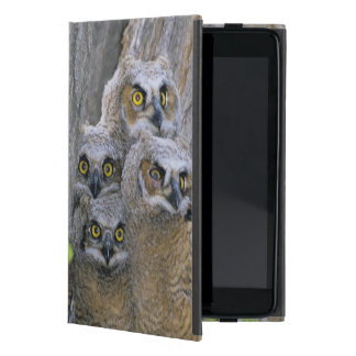 Great Horned Owlets (Bubo virginianus) nest in a Case For iPad Mini