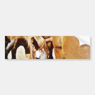 Great Horse Bumper Stickers