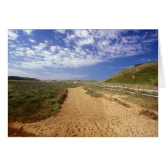 Great Island Trail, Wellfleet, Cape Cod Card