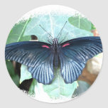 Great Mormon-Tropical Butterfly Round Stickers
