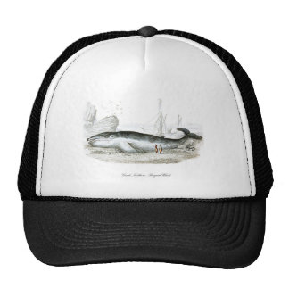 Great Northern Whale #15 Gift for him Trucker Hat