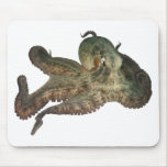 Great ocean octopus octapi mouse pad