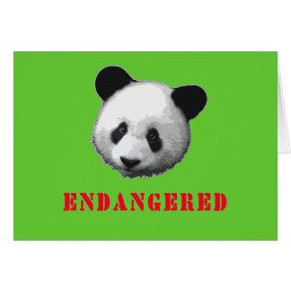 Great Panda Endangered Bear Card
