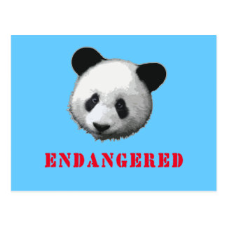 Great Panda Endangered Bear Postcard