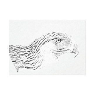 Great Philippine Eagle Canvas Print