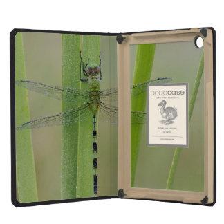 Great Pondhawk , Erythemis vesiculosa, adult iPad Mini Retina Cover