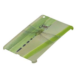 Great Pondhawk , Erythemis vesiculosa, adult iPad Mini Cases