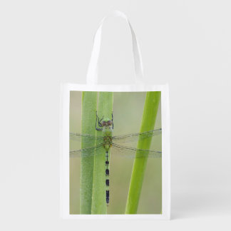 Great Pondhawk , Erythemis vesiculosa, adult Reusable Grocery Bag