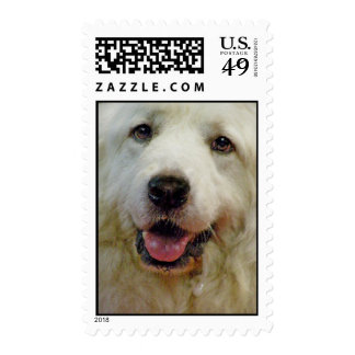 great pyr postage