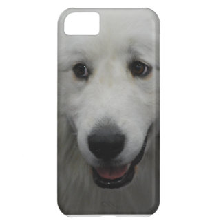 great-pyrenees-20.jpg case for iPhone 5C