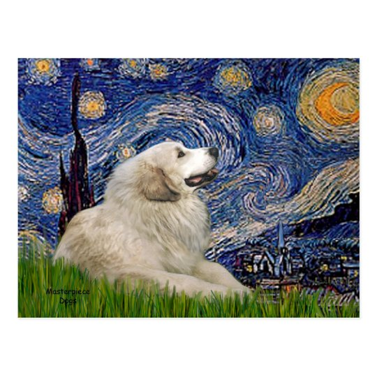 Great Pyrenees 2 - Starry Night Postcard