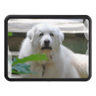 great-pyrenees-8 trailer hitch covers